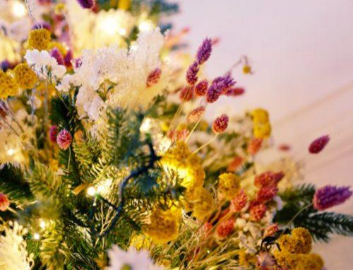 Décorations de Noel thème Pampa